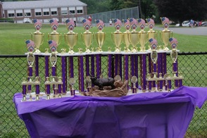 Sparta Elks Club Trophies