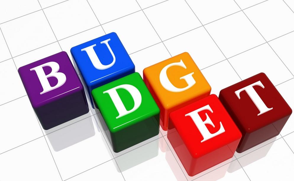 45d7156cd384460930c5_budget.PNG