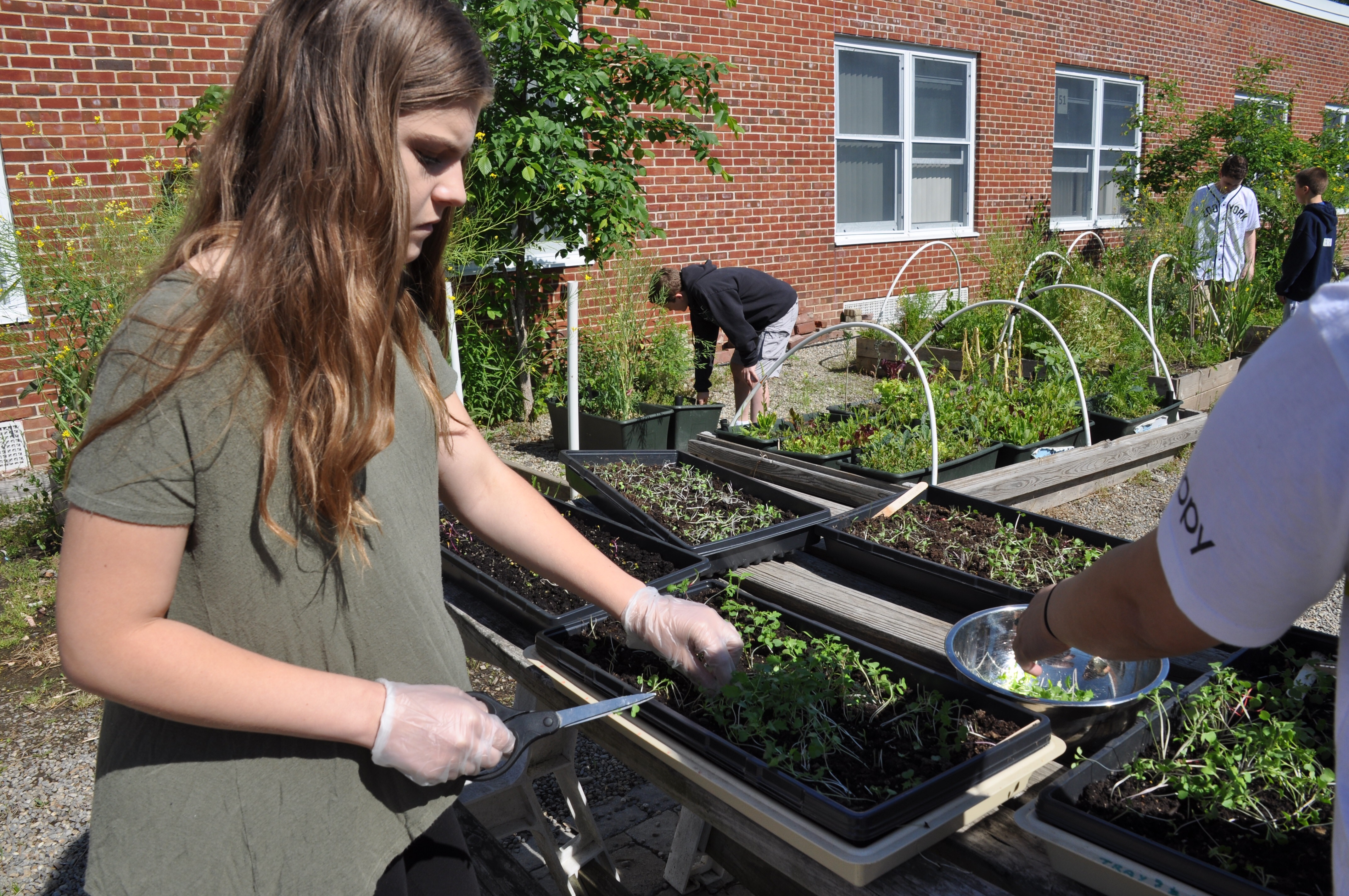 Community Supported Agriculture and Sustainable Farming are Part of Montville's Middle School Curriculum