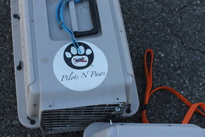 Pilots N Paws are flying many puppies and dogs home...for good!