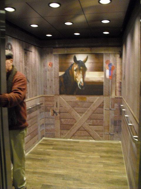 c13bea7f013b576d2470_Epic-elevator_horse_stall.jpg