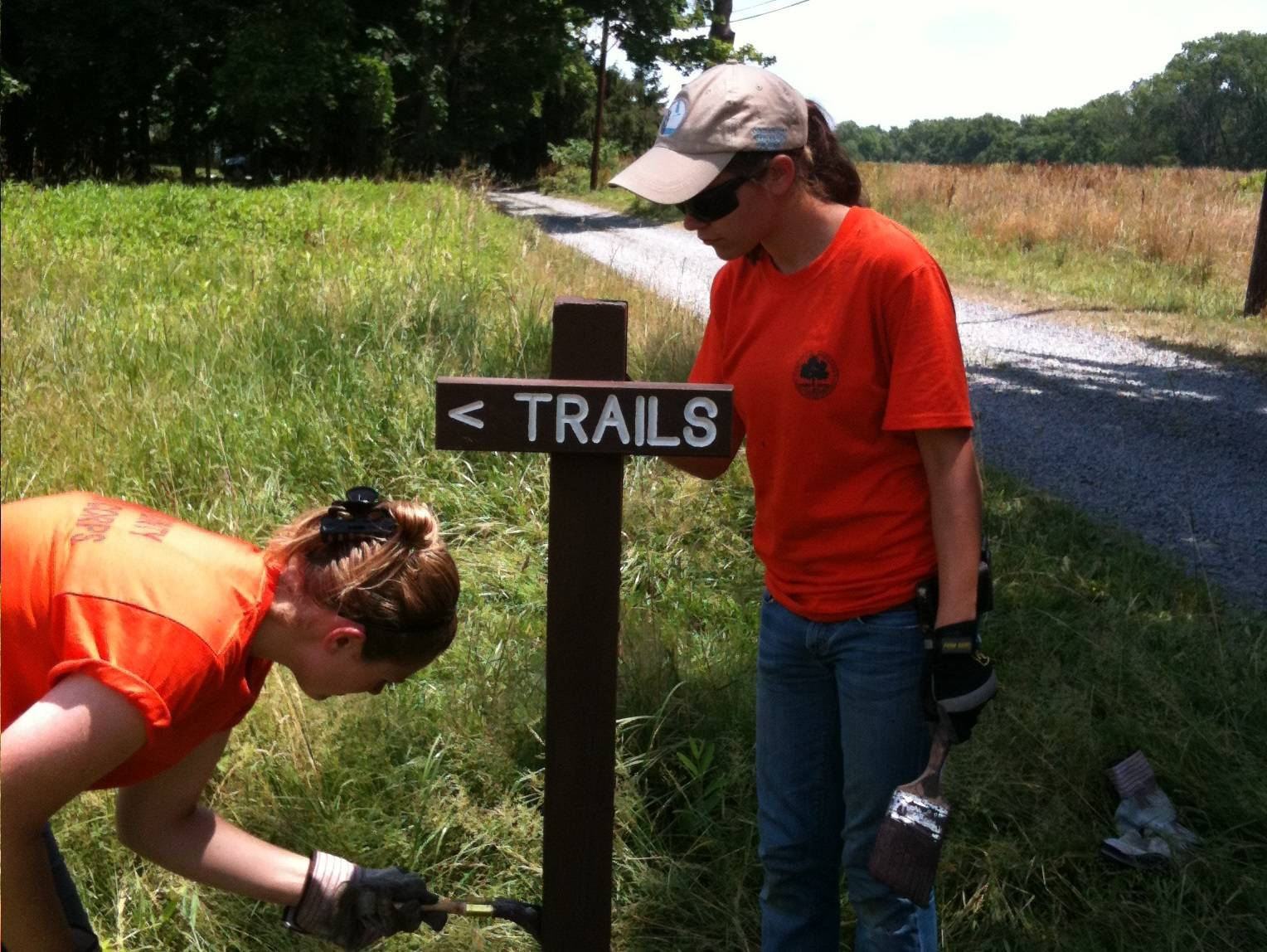 high school college students sought for county youth conservation high school college students sought for county youth conservation corps photo 1