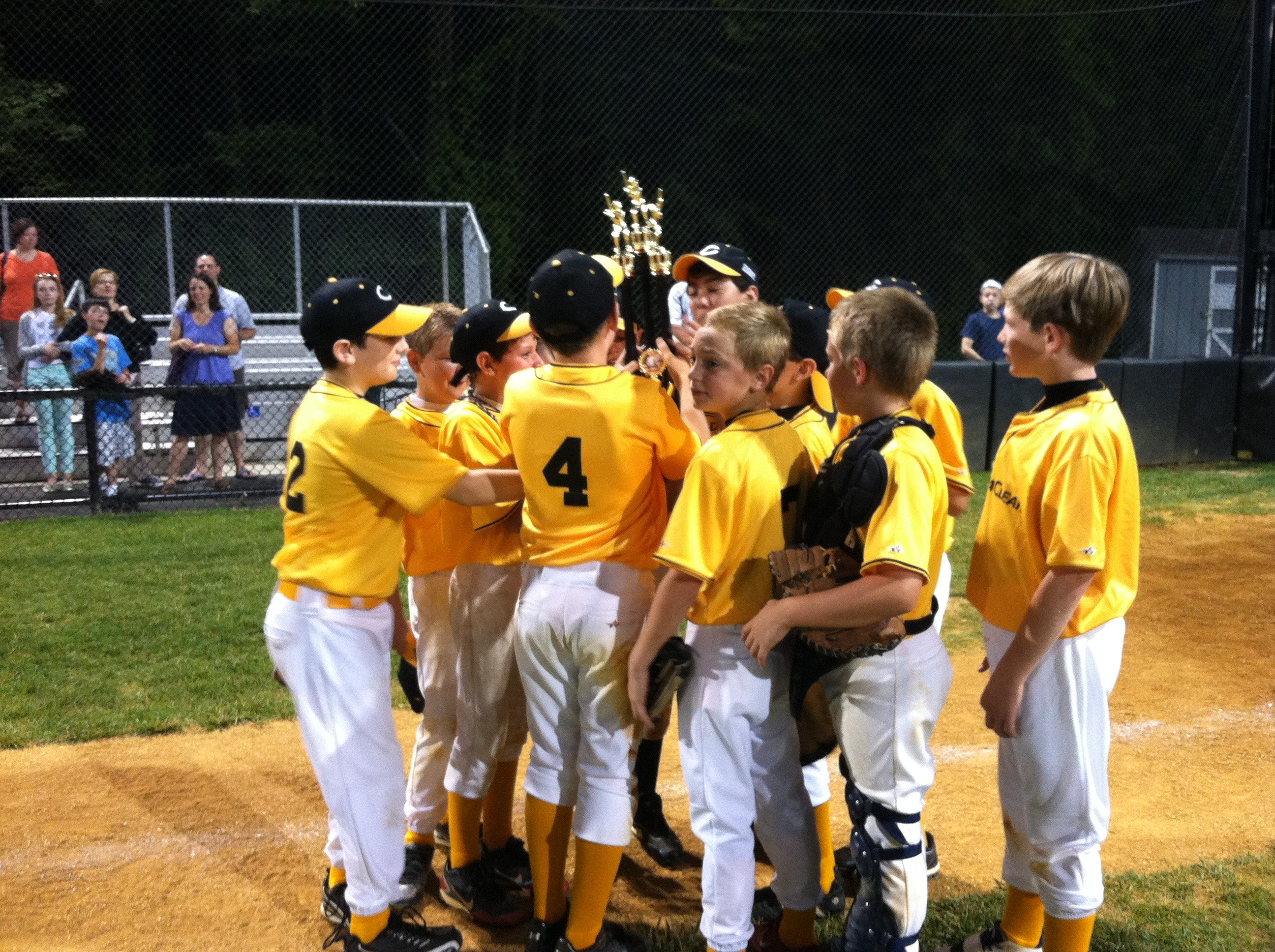 Chatham and Madison Team Up to Host Baseball Championship