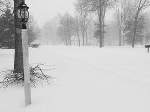 Carousel_image_51319ed1307bf6146916_snowbetsybastockmardr