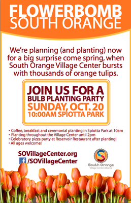 "South Orange Village Center to be ""Flowerbombed"", photo 2"