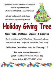 Top_story_c571fffd04a465956bc2_holiday_giving_tree