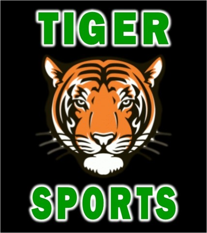 Top_story_9d2af8d60e561b0228d4_tiger_sports_logo