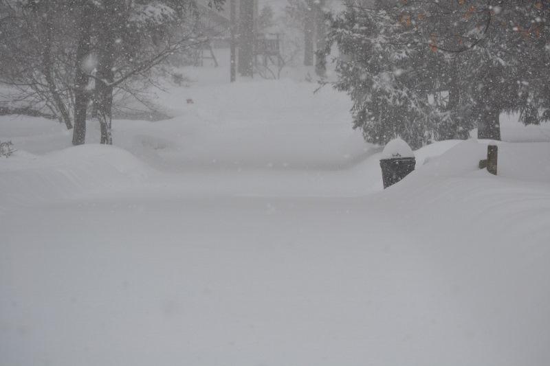 c4f9c7dba26d0dff6be1_February_2014_snow_storm_022__800x533_.jpg