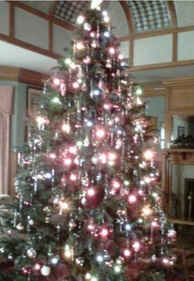 The Edison Christman tree