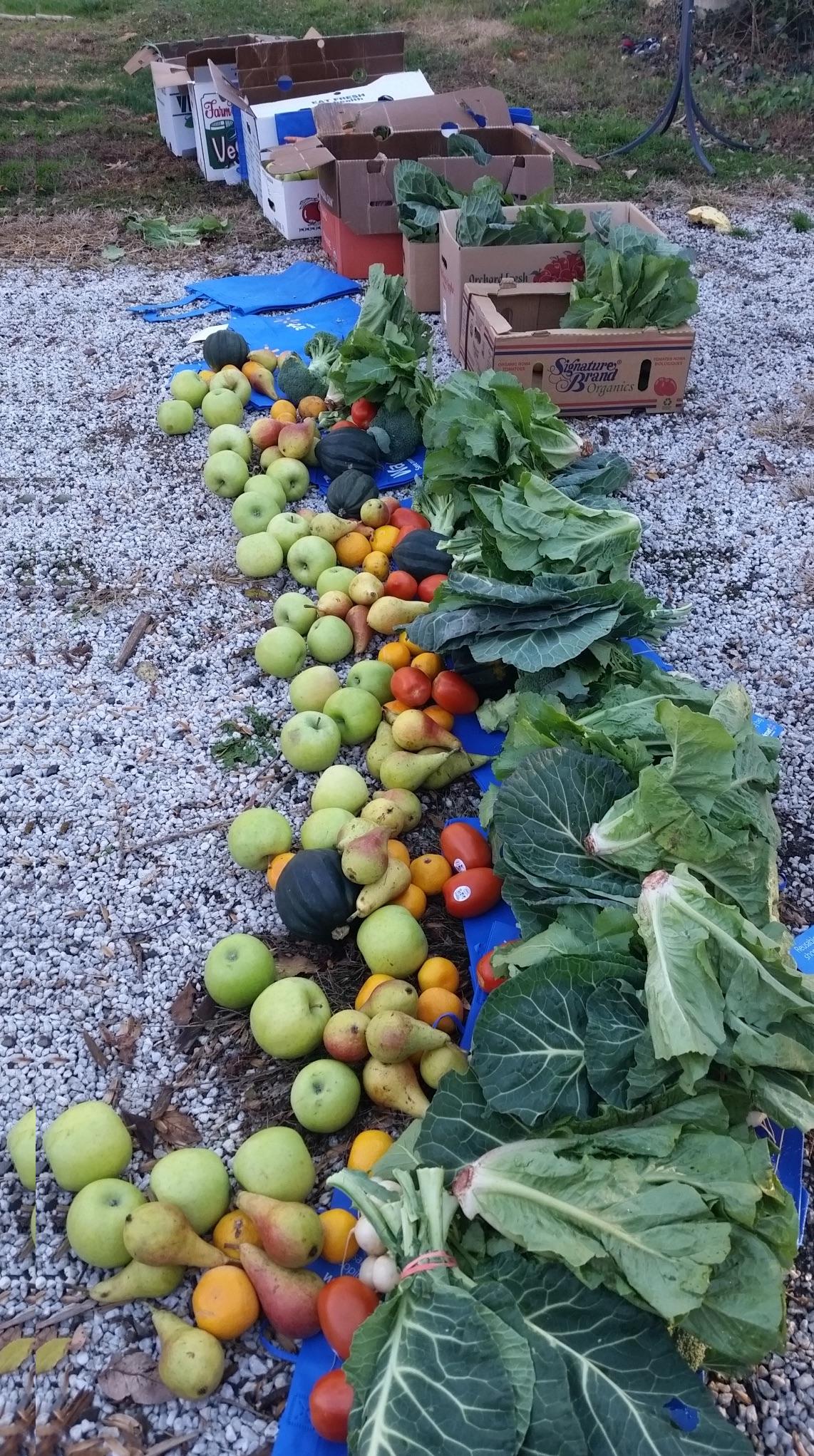 Organic Food Co Op Nj
