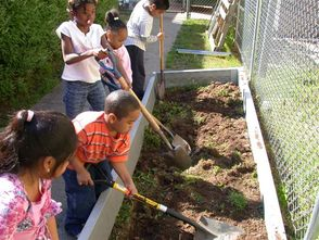Grow a Great School or Community Garden