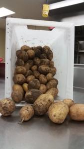 7a3367da9cb0d035be72_potatoes.png