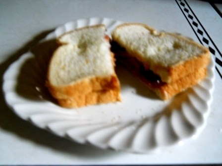 886d69edd6dfe7a77d65_WEB_sandwich.JPG