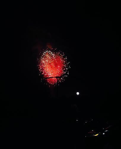f823fa6e0d95b096291e_FireworksBuschG.jpg
