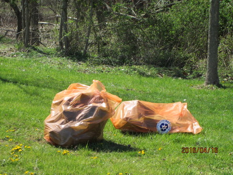 Top_story_381329526459fbe2365d_spring_cleanup_2016_bags_005
