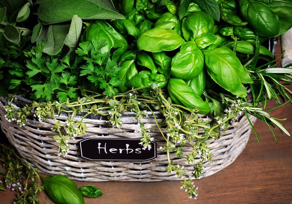 Spice up your garden with new herb gardening workshop for Heirloom kitchen nj