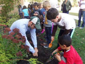 Kindergarteners plant bulbs in hopes of colorful spring