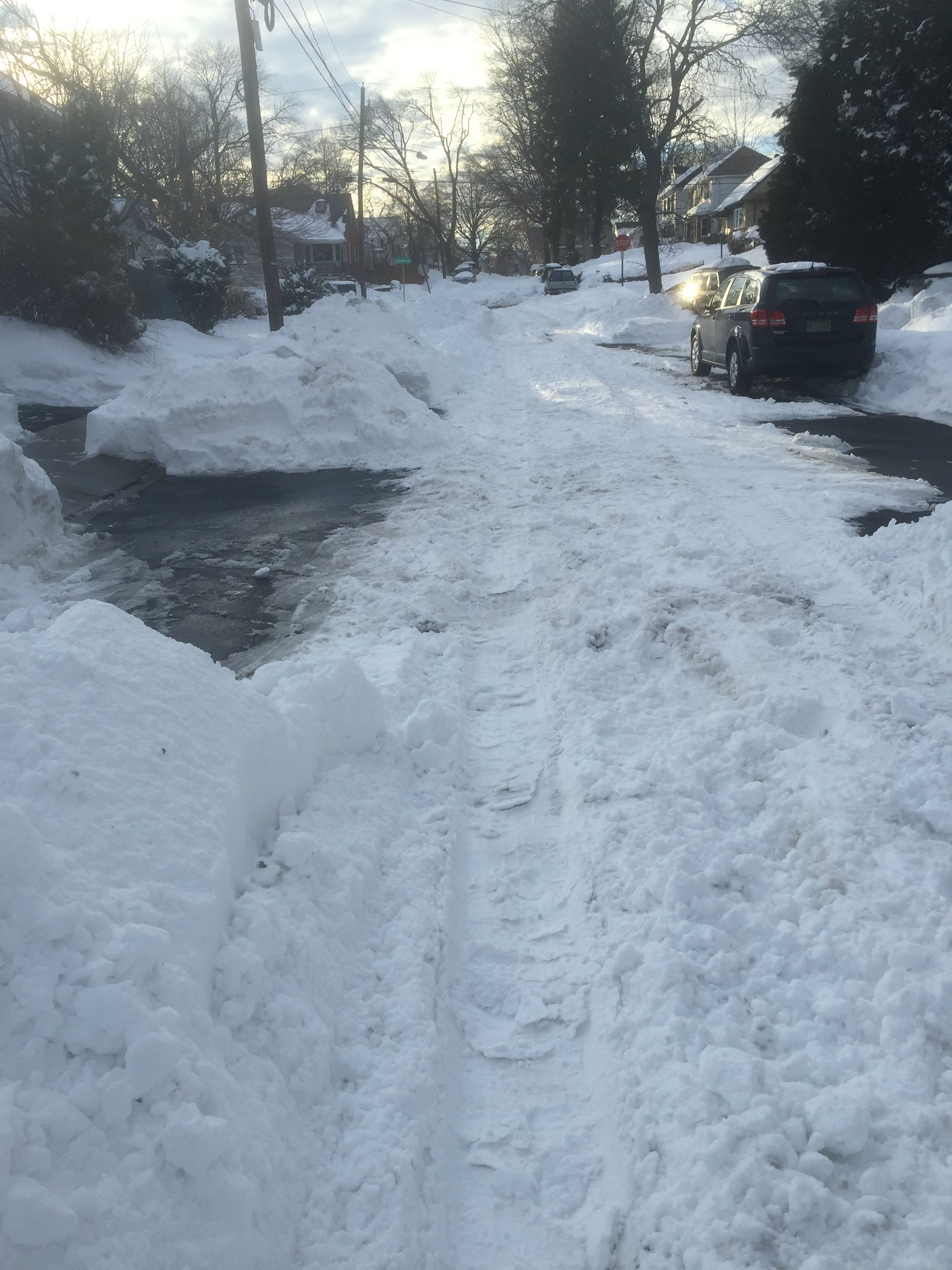 29c62cd1735becb0fd45_snow_2_-1.jpg