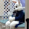 Small_thumb_e54eb808acad68d9da64_easter_bunny