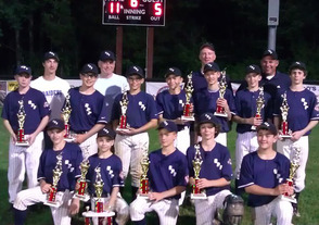 Higgins coached the SPFBL 12U Bridgewater Tournament Champions in 2011
