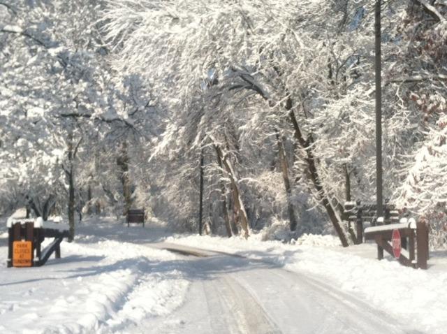 576b57b13e76a95b4ddf_snow.jpg