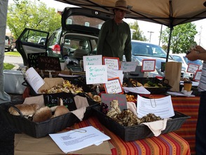 Photos: Lansdale Farmers' Market Debuts Saturday, photo 16