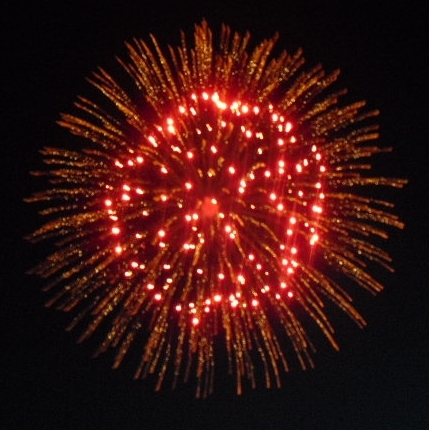 805747e475e9c2f77124_Fireworks-red_perfect_flower.jpg