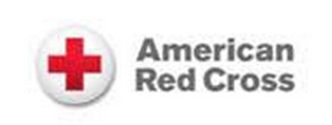 c356a548654366c8b3af_red_cross.PNG