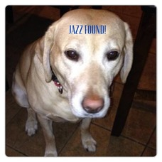 Jazz Is Found, photo 1
