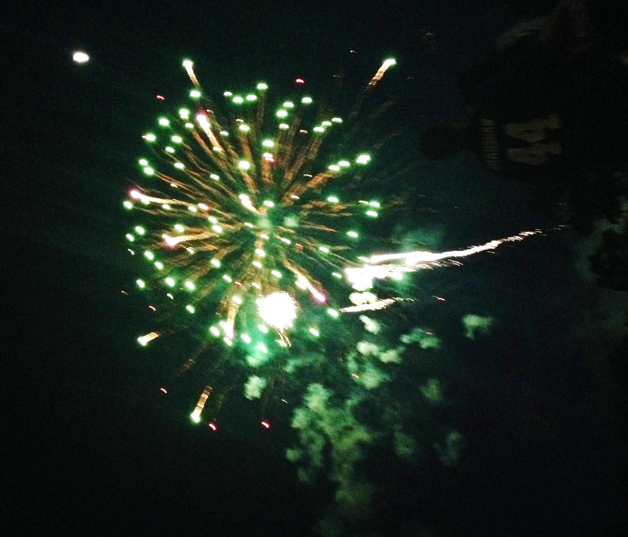 d49a998f3e5d73e4777f_firework.jpg