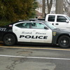 Small_thumb_1704a78527d66aa7a5e5_spf_police_car
