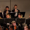 Small_thumb_29510105c249e94fd3a3_brass_section_of_ys