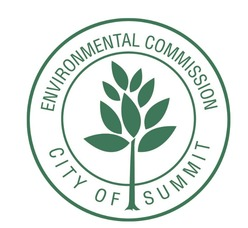 Summit EC Logo