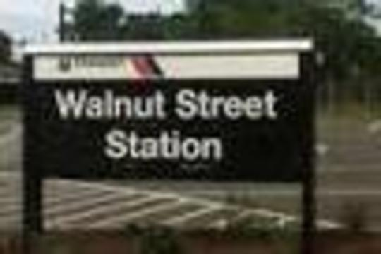 Top_story_8aa102e4a2dbbd86c624_2d446368863d454c91d8_walnut.st.train.station