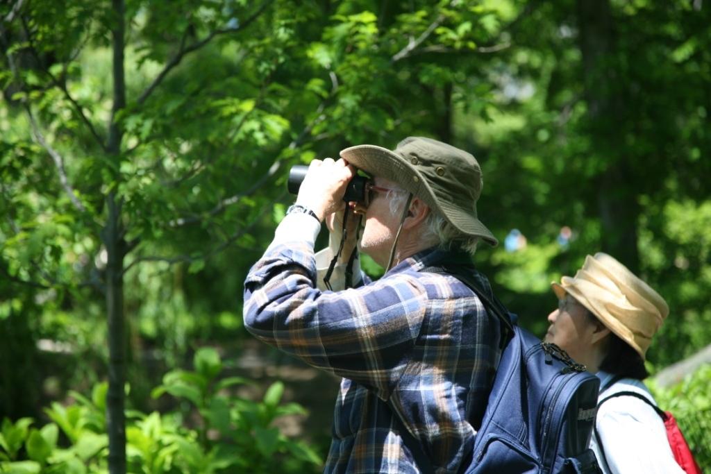 417f64a594a1d03ebd1c_Birdwatching.jpg