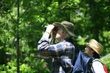 Thumb_417f64a594a1d03ebd1c_birdwatching