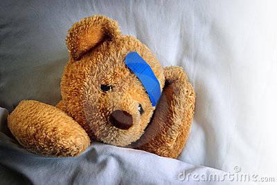 6752c7c512806dfa69d4_Teddy_with_bandage.jpg