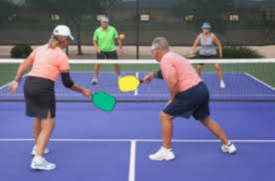 Top_story_6d65a76ddf662e398f8e_pickleball