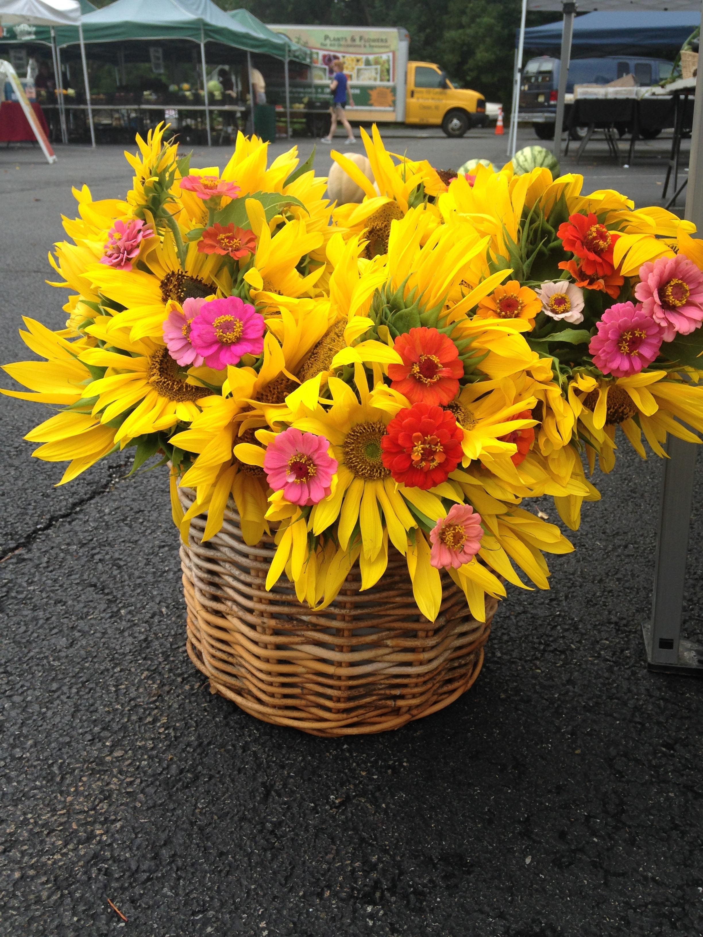 2c9696d4ac8feef89a9a_murph_flowers.jpg