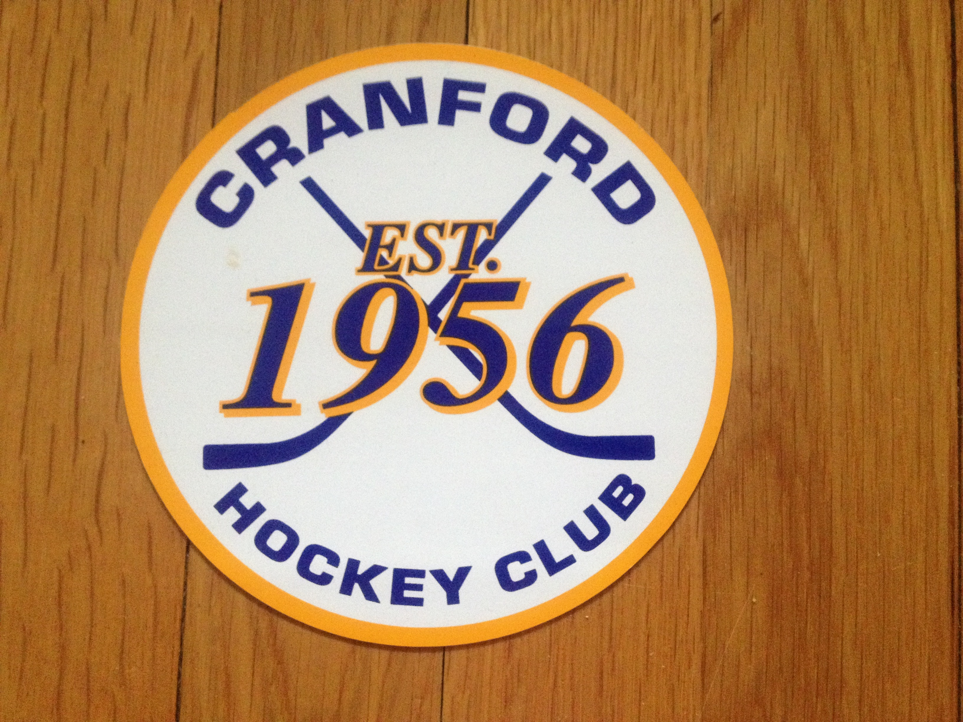 f8fcfc8b207f9da4d996_hockey_club.jpg