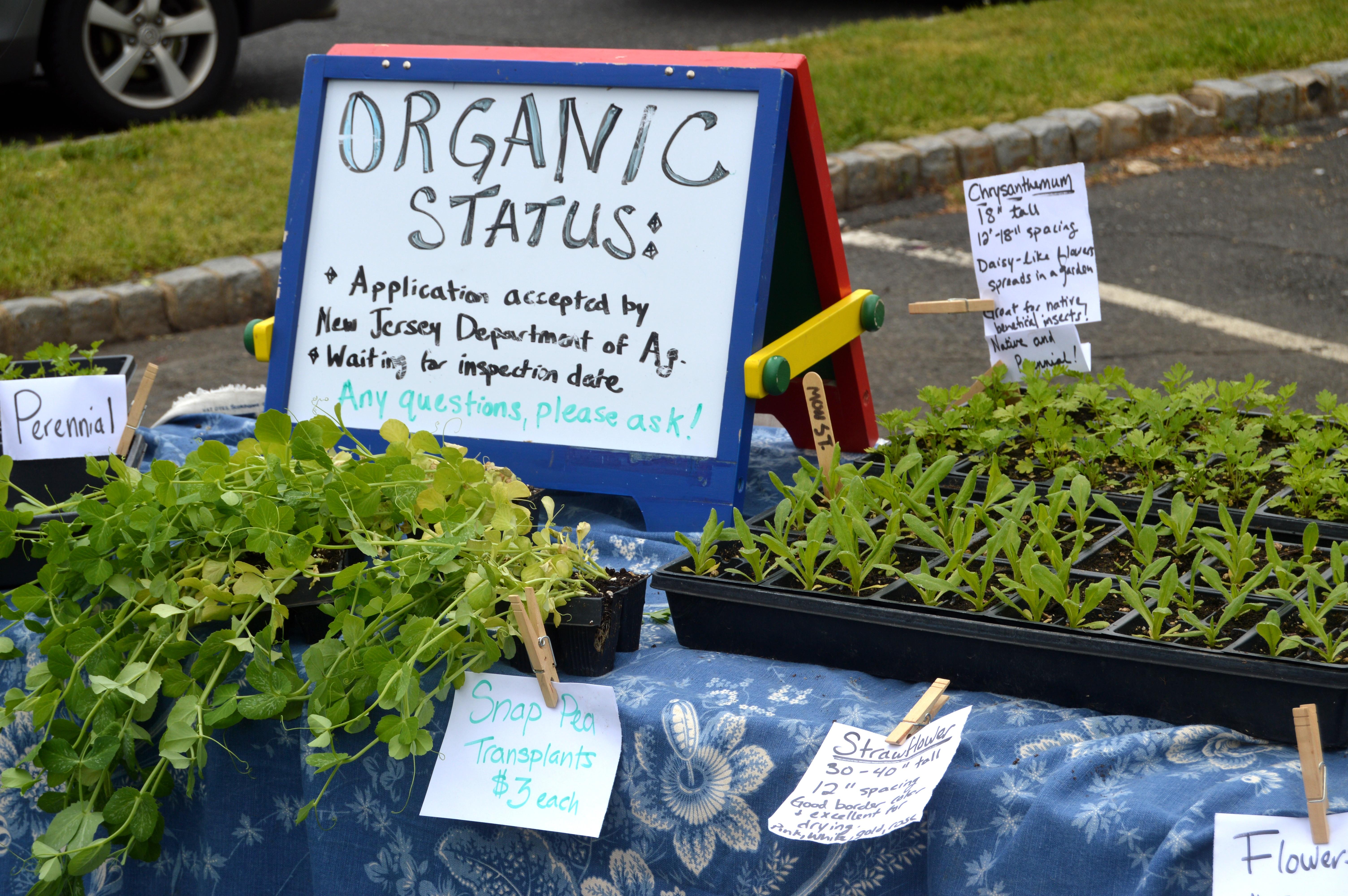 a51b9e8c5957a93a99c7_Farmer_s_Market_-_Organic_sign.JPG