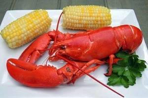 Carousel_image_ec9fe0ed9606d2513f05_386a6f27b64067477cdb_lobster
