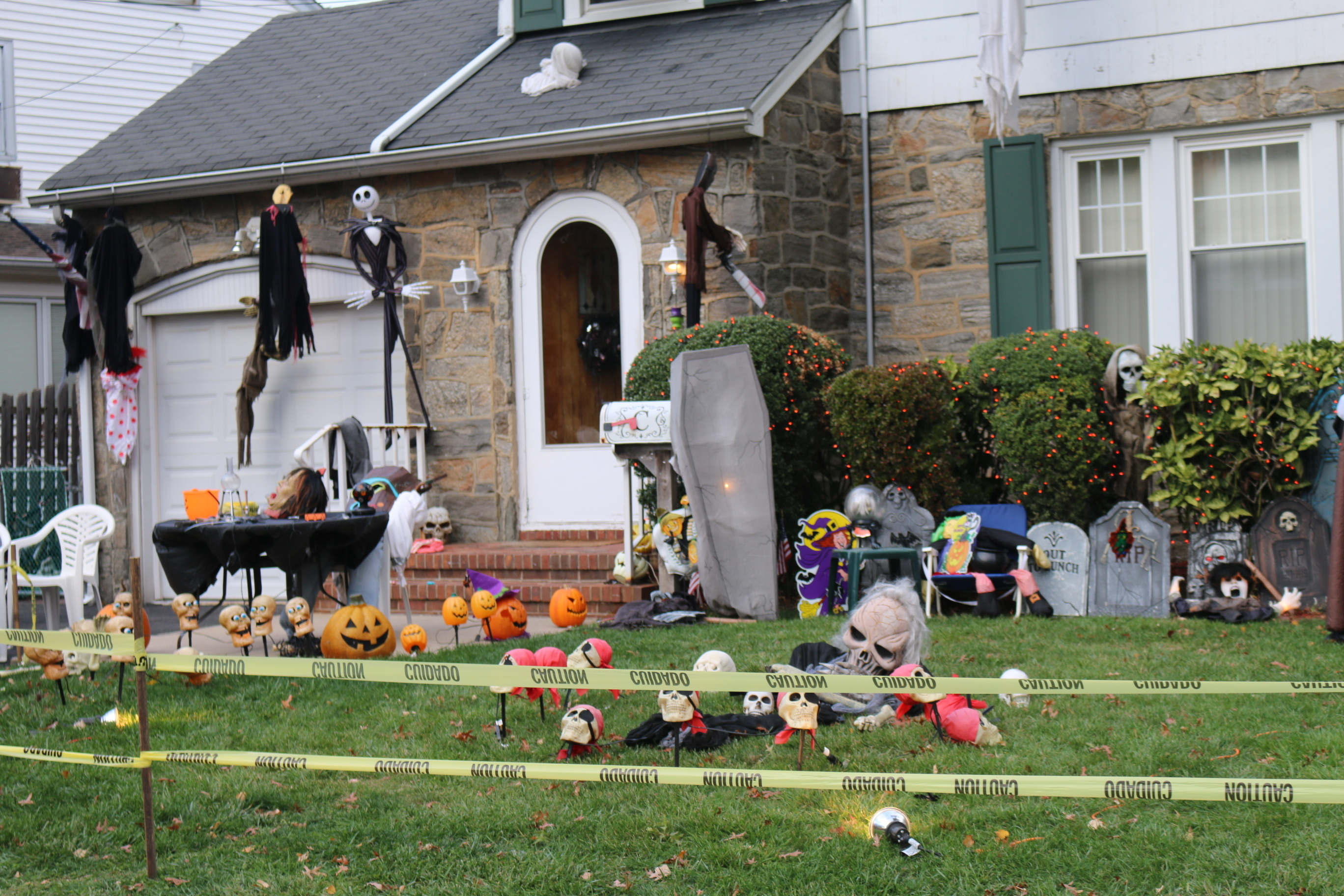 halloween fun is not just for kids news tapinto