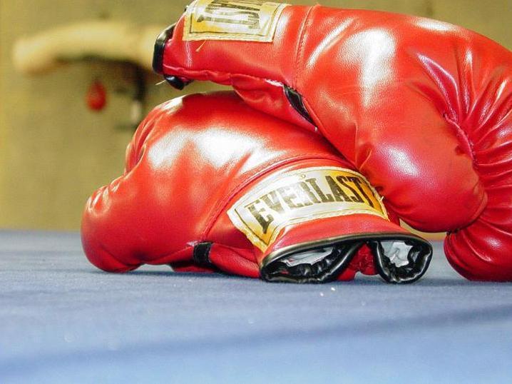 55fea4762b79c00ecd30_Gloves.jpg