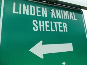 Linden Animal Shelter