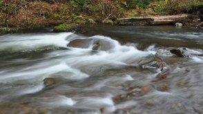 Overflowing Creek Banks