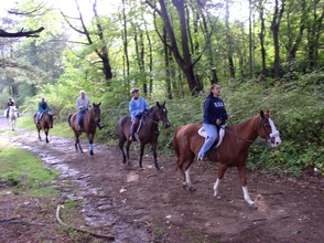 Summer Savings Special for Rides at Watchung Stable in Mountainside, photo 1