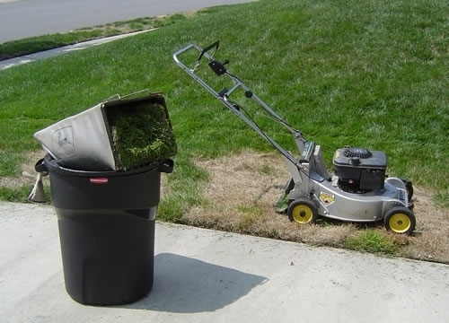 03872d57424a13c1bd9c_grass_clippings_by_rubbermaid_products.JPG
