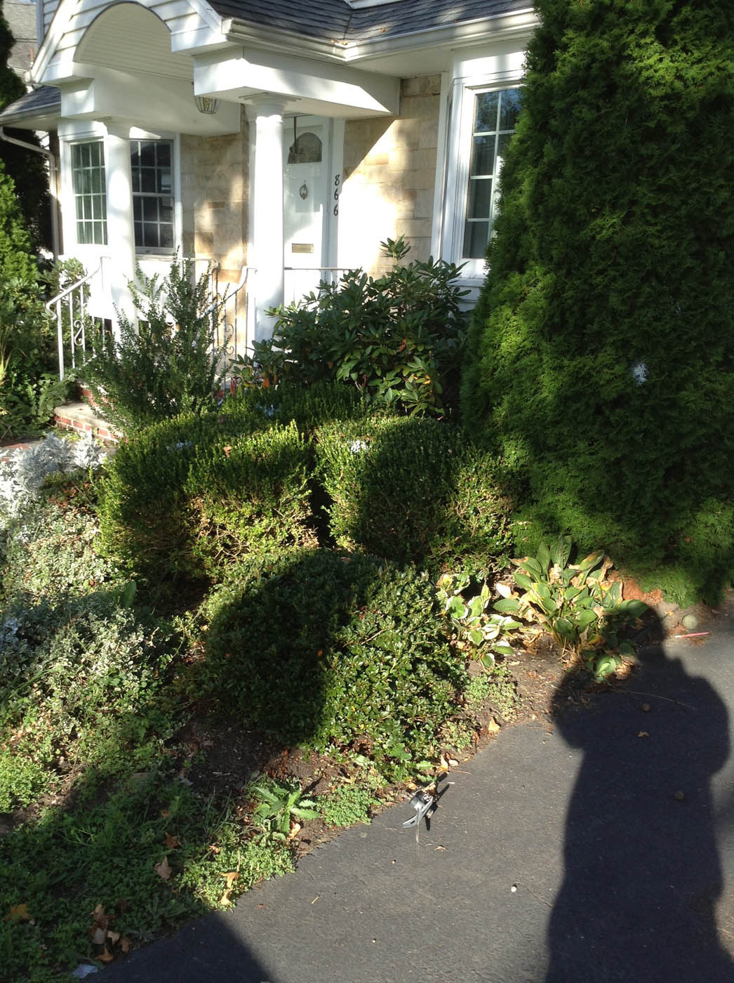 1357cd6ab972ff6e086e_Landscaping_Walkway_Before.jpg
