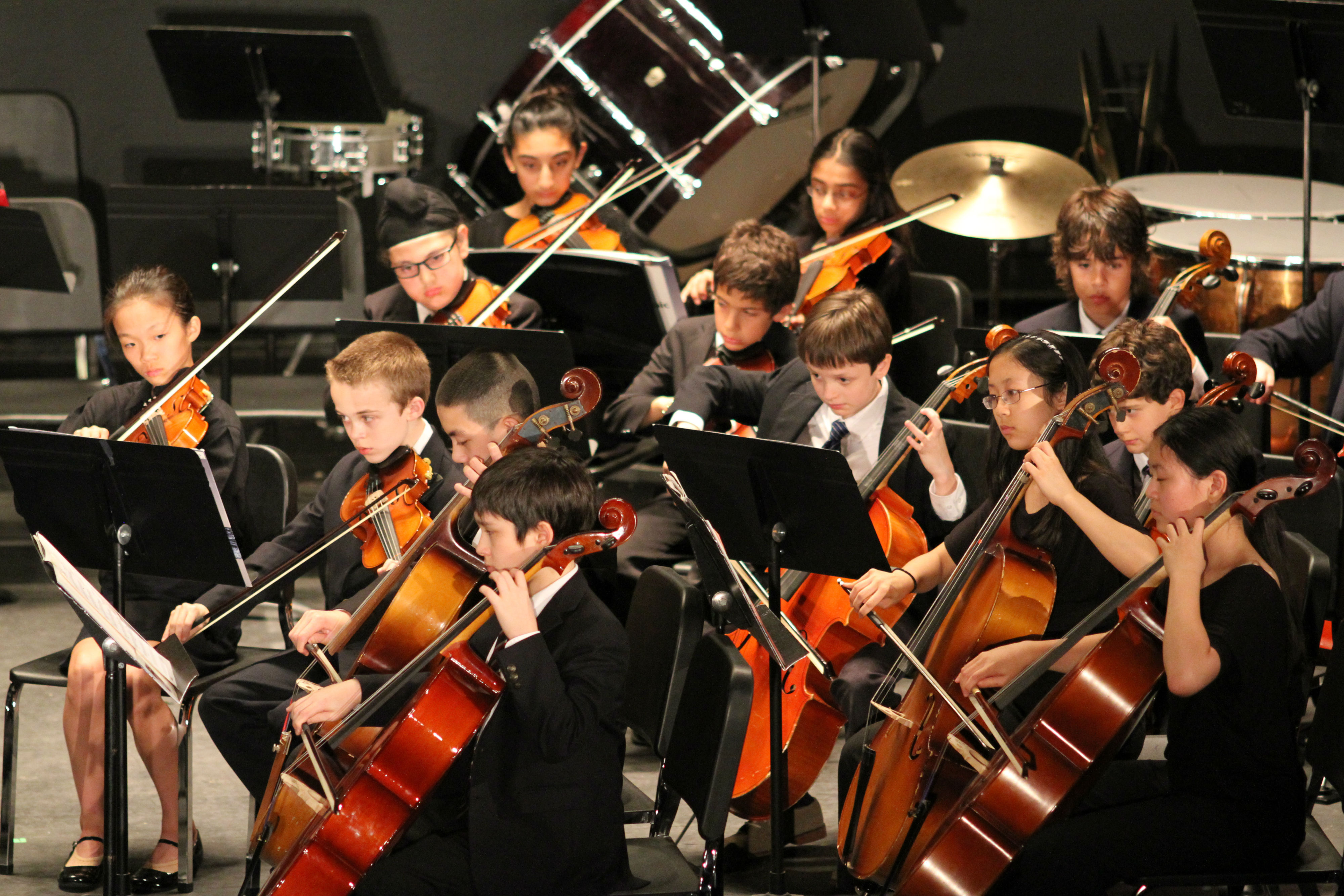 classical music concert essays · check out our top free essays on classical music concert report essay to help you write your own essay.